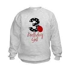 3 Ladybug Birthday Girl Sweatshirt