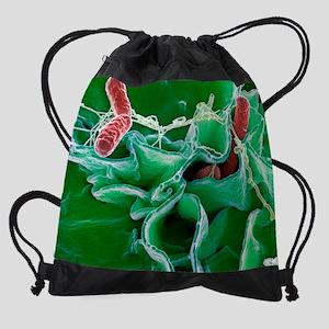 Salmonella bacteria, SEM Drawstring Bag