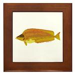 Kelp Greenling fish Framed Tile