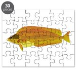 Kelp Greenling fish Puzzle