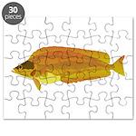 Kelp Greenling fish Puzzle