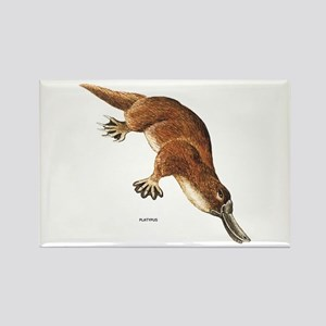 Platypus Animal Rectangle Magnet