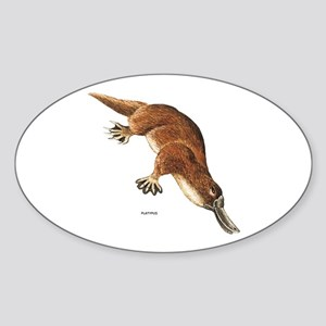 Platypus Animal Sticker (Oval)