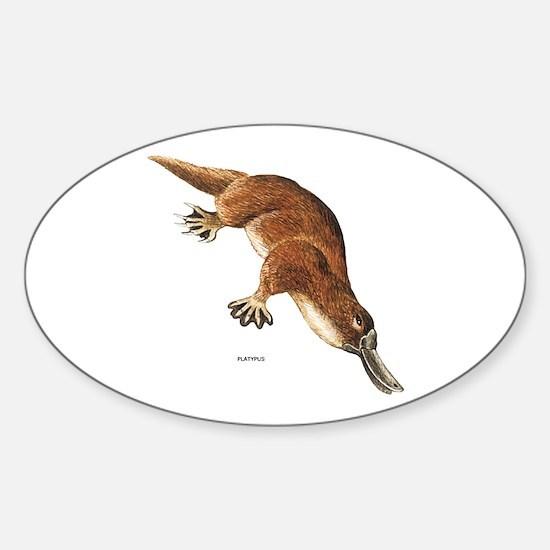 Platypus Animal Sticker (Oval)