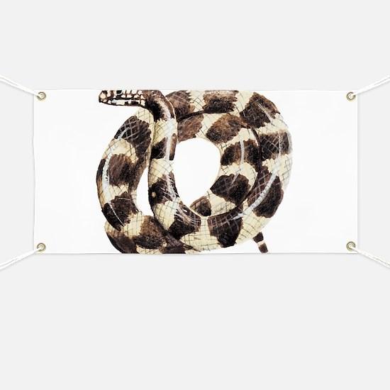 King Snake Banner