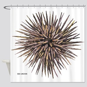 Sea Urchin Shower Curtain