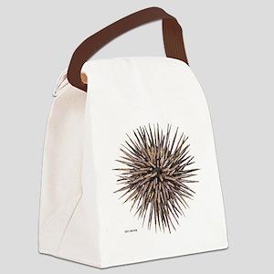 Sea Urchin Canvas Lunch Bag