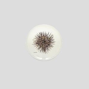 Sea Urchin Mini Button