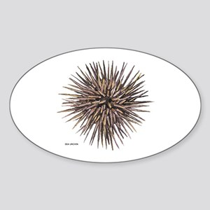 Sea Urchin Sticker (Oval)