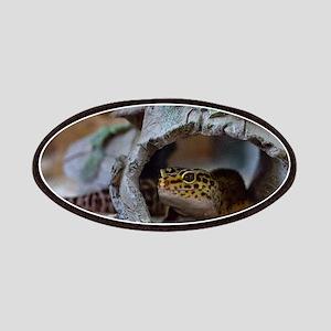 leopard geckos house Patches
