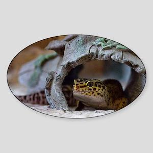 leopard geckos house Sticker