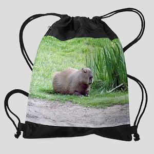 1620 28 0025 capybara laying down.p Drawstring Bag