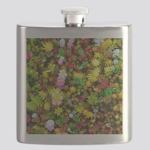 Variegated Floral Succulents Flask