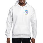 Bertollo Hooded Sweatshirt