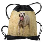 The Dane cal.png Drawstring Bag