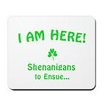 I am here! Shenanigans to Ensue... Mousepad