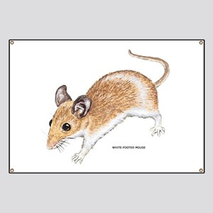 White-Footed Mouse Banner