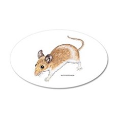 White-Footed Mouse Wall Decal