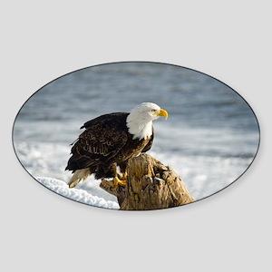Bald Eagle Homer Alaska Sticker