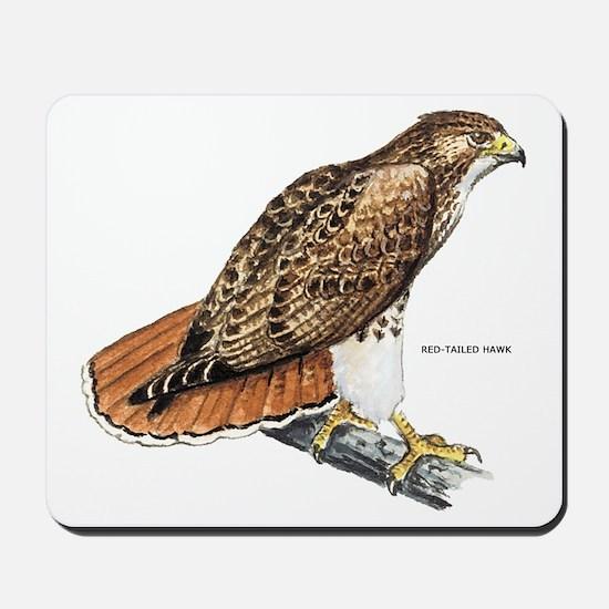 Red-Tailed Hawk Bird Mousepad
