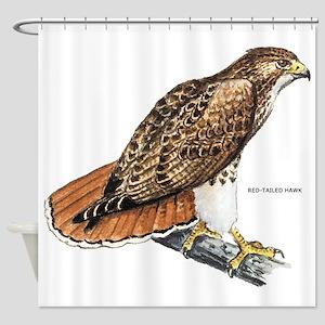 Red-Tailed Hawk Bird Shower Curtain