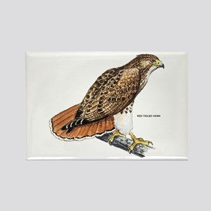 Red-Tailed Hawk Bird Rectangle Magnet