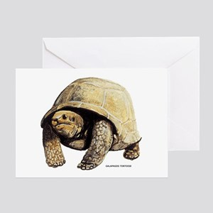 Galapagos Tortoise Greeting Card