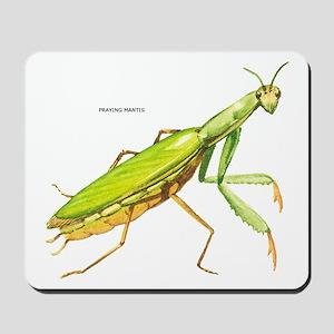 Praying Mantis Insect Mousepad
