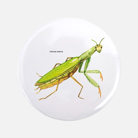 """Praying Mantis Insect 3.5"""" Button (100 pack)"""