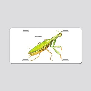 Praying Mantis Insect Aluminum License Plate