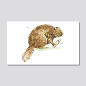 Beaver Animal Car Magnet 20 x 12