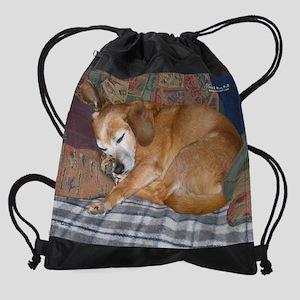 julrescuedog Drawstring Bag