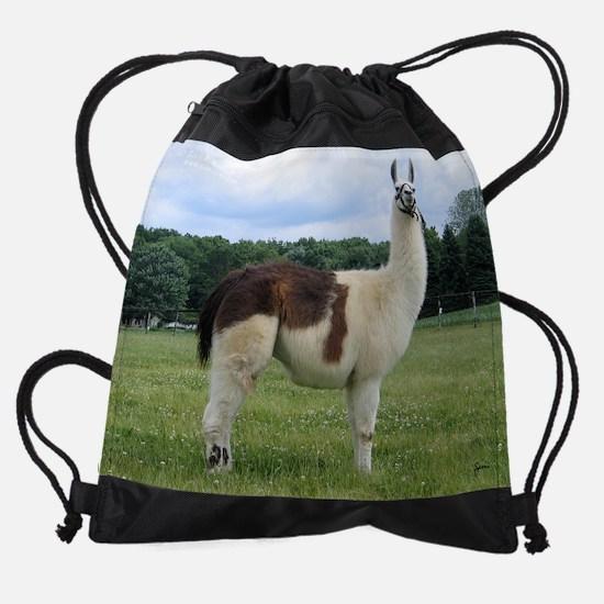 julw&nature.png Drawstring Bag