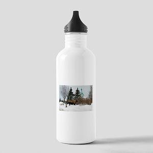 Moose Old Kenai Alaska Water Bottle