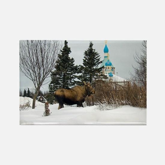 Moose Old Kenai Alaska Rectangle Magnet