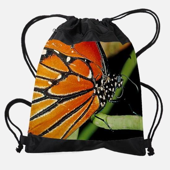 Queen (c)SMK.png Drawstring Bag