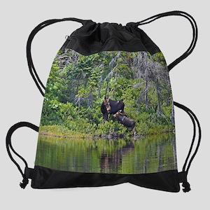 16x20_print 2 Drawstring Bag