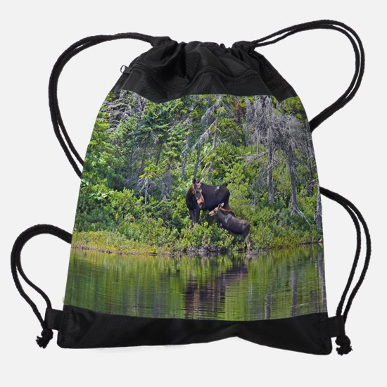 16x20_print 2.png Drawstring Bag