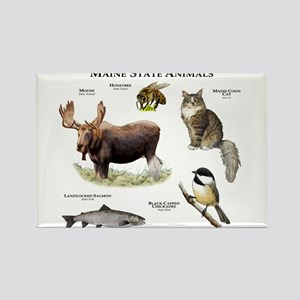Maine State Animals Rectangle Magnet