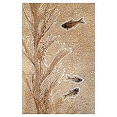 Knightia fossil fish Poster