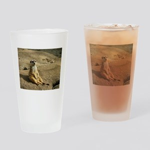 Chillin Like A Villian Drinking Glass