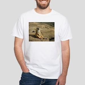 Chillin Like A Villian T-Shirt