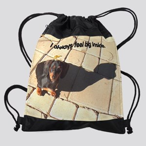 Big Inside dachshund Dog 10x8 Drawstring Bag