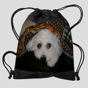 SOPHIE SHELTERED Drawstring Bag