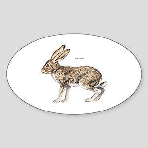 Jack Rabbit Sticker (Oval)
