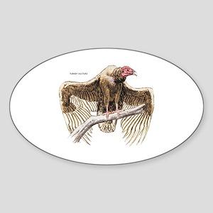 Turkey Vulture Bird Sticker (Oval)