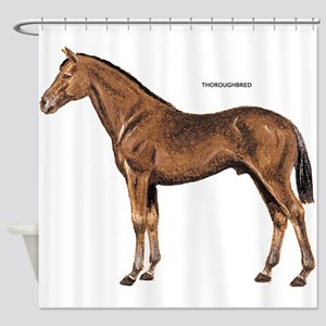 Thoroughbred Horse Shower Curtain