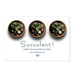 Succulent #2 Postcards (Package of 8)