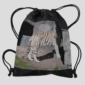 DSCN3882 Drawstring Bag