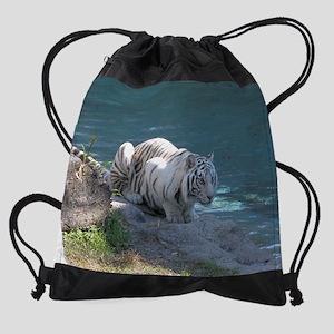 DSCN3892 Drawstring Bag